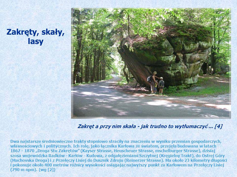 Zakręty, skały, lasy. Zakręt a przy nim skała - jak trudno to wytłumaczyć ... [4]